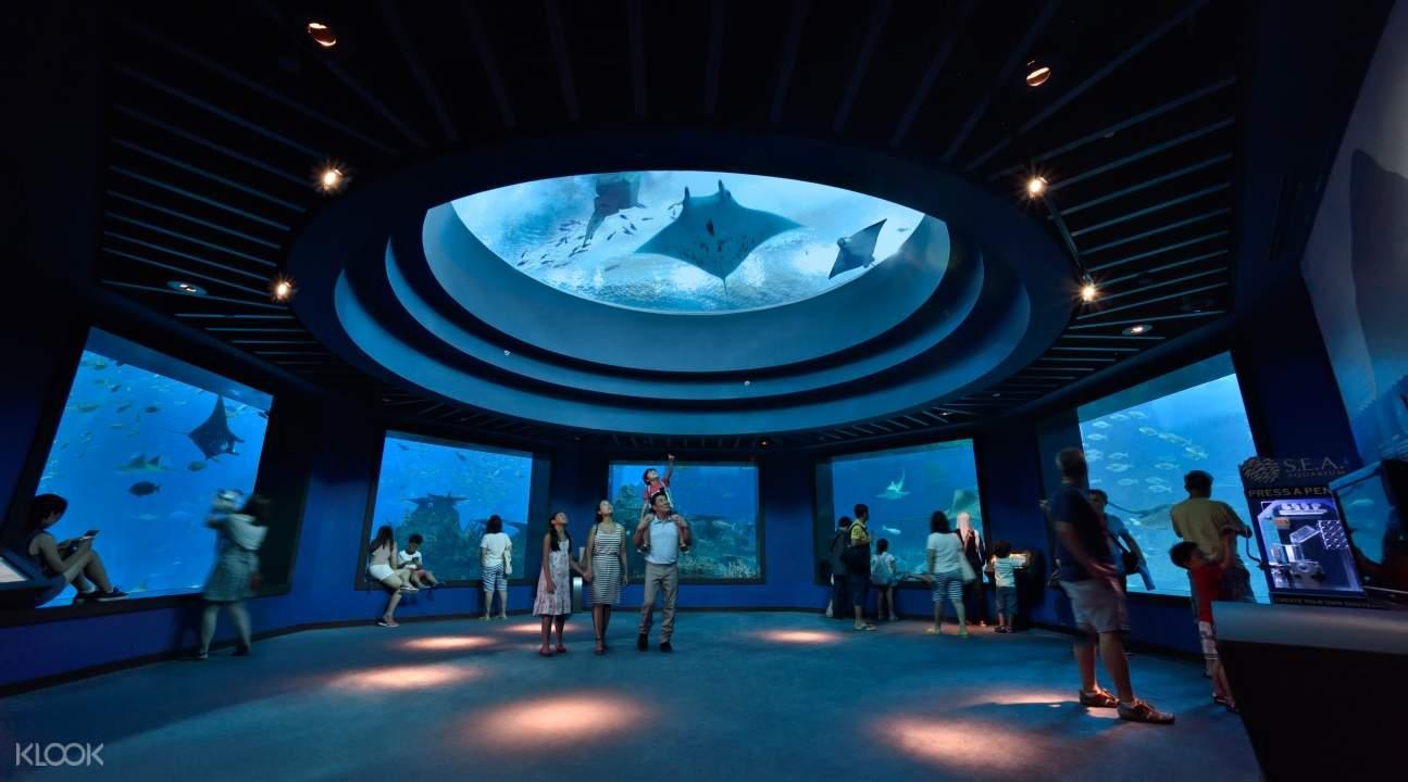 people exploring the S.E.A. Aquarium in Sentosa